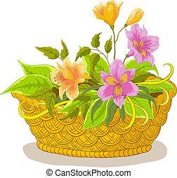 cesto, con, fiori, alstroemeria
