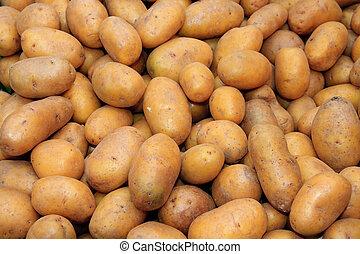 Patate raccolta blu mietitore patata cielo due for Raccolta patate