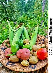 cesto, verdura, 5