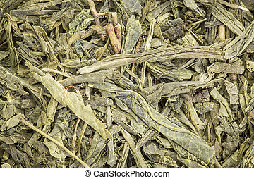 chá, sencha, experiência verde