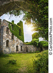 château, clifden