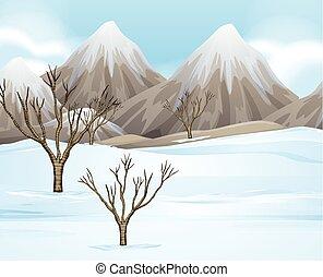 chão, cena, neve, natureza