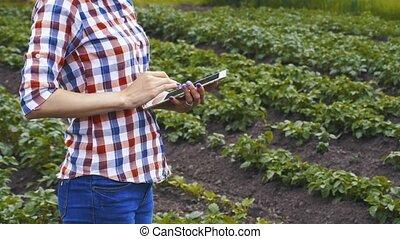 chèques, farm., agronomist, croissance, taux, pomme terre, ...