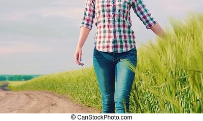 chèques, farm., céréale, agronomist, croissance, taux, femme...
