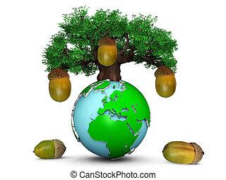 chêne, sommet, glands, arbre, la terre