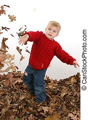 chłopiec, liście, dziecko