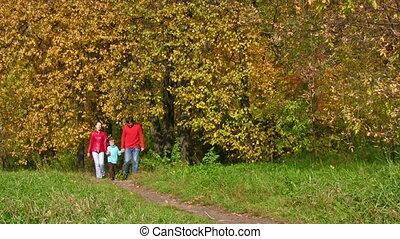 chłopiec, pieszy, park, jesienny, rodzice