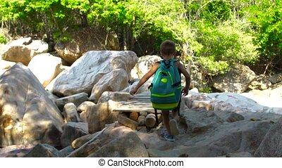 chłopiec, pieszy, turysta, hiking, most, drewniany, góry., na, działalność, forest., znowu, lato, dżungla, wisząc, wspinaczkowy, rzeka, bridge., kamienisty, kids.