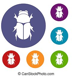 Chafer beetle icons set in flat circle reb, blue and green...