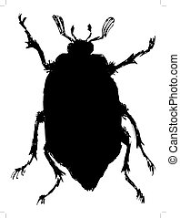 chafer - black silhouette of chafer
