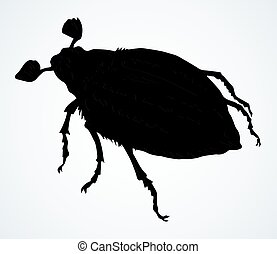 Chafer. Vector drawing of a big beetle