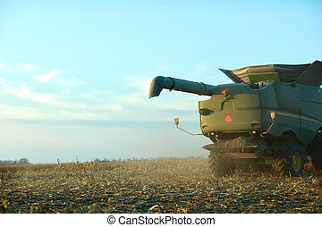 Chaff blowing out behind a combine harvester - Chaff blowing...