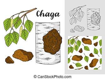 Chaga mushroom (Inonotus obliquus) set. with seamless...