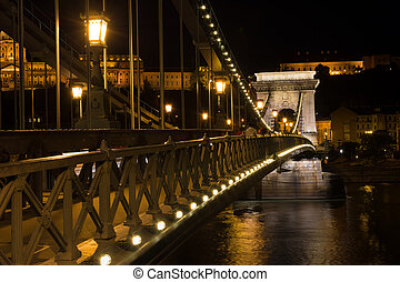Chain bridge Budapest Hungary illuminated at night with old pala
