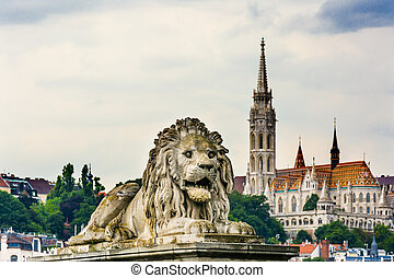 Chain Bridge Lion Matthias Church Budapest Hungary - Chain...