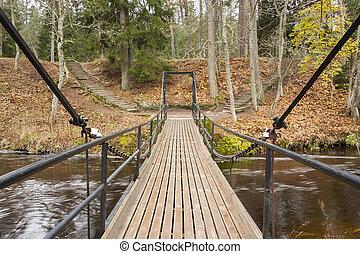 Chain bridge over river in forest