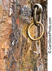 chain is in a granite