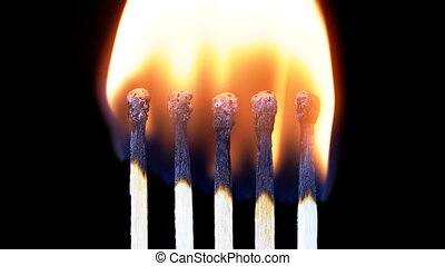 Chain Reaction of Five Matches Lit and Flame on a Black...