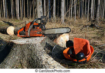 Professional woodcutter tools, helmet, headphones, chainsaw on tree stump.