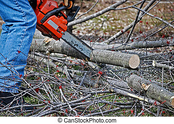 Chain Saw - Man using a chain saw.