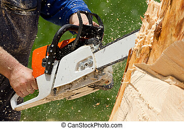 Chainsaw blade  - Man with chainsaw cutting the tree