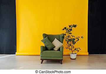 chair and green plant in the interior of the room with a yellow background