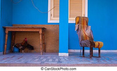 terrace - chair, hen and cockerel on a blue terrace