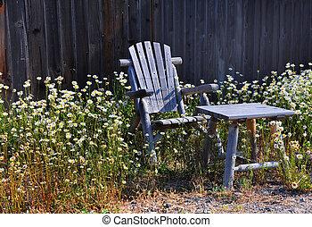Chair in Daisy Garden