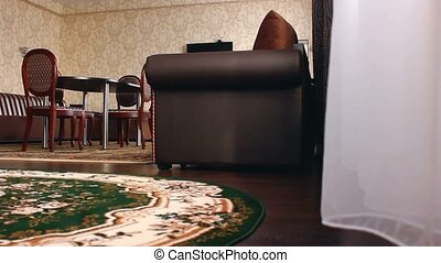 chair room Interior with chairs hotel and carpets beautiful...