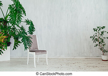 chair with home plants in the interior of a gray vintage room