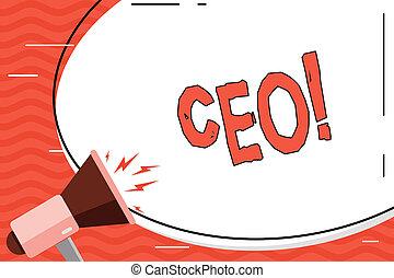 chairdemonstrating, głowa, pojęcie, słowo, handlowy, tekst, wykonawca, ceo., controller., pisanie, szef, oficer, chairanalysis, szef