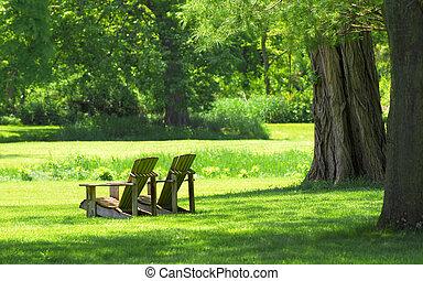 chairs, страна, настройка, адирондак