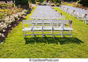 Chairs in a park