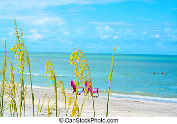Chairs on the beach of the Gulf of Mexico Florida USA