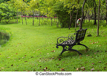 Chairs on the lawn in the park.