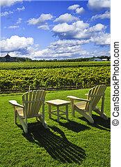 Chairs overlooking vineyard - Muskoka chairs and table near...
