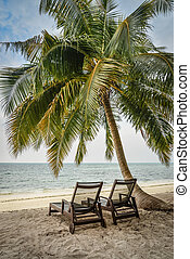 Chairs under palm tree on beach on Maldives. Tropical holiday consept