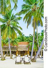 chaise, palma, longue, praia