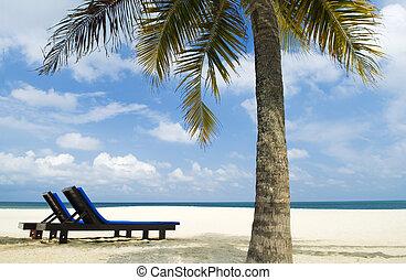 chaise plage, exotique