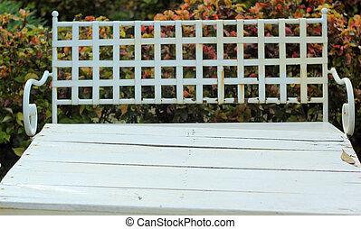 chaises, jardin, nature