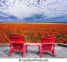 chaises, joint, deux, rouges, plastique