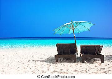 chaises plage, à, parapluie
