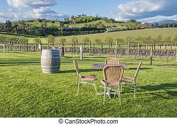 chaises, vignoble, table extérieure