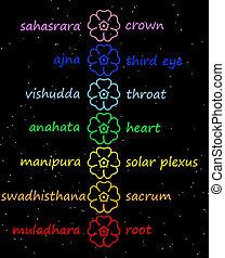 chakra, colonne, fleurs, coloré
