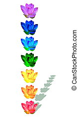 Chakra colors of lily flowers