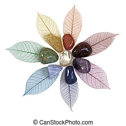 A flower shape of chakra colored skeleton leaves on a white background with chakra colored crystals on top