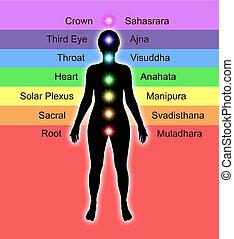 Chakra Names and Diagram