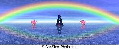chakras, em, meditação