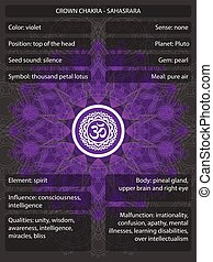 Chakras symbols with meanings infographic vector...
