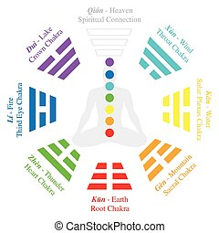 Chakras of a meditating man in yoga position - by analogy the trigrams or Bagua of I Ching. Isolated vector illustration on white background.